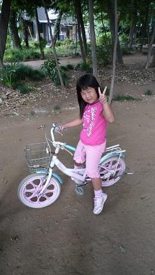16 インチ 自転車 4 歳 の 誕生日 ...